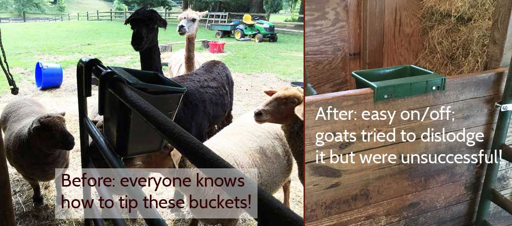 buckets-beforeafter